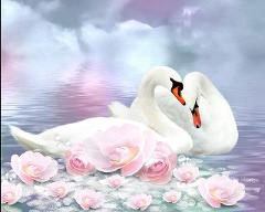 EverShine Diamond Painting Swan Picture Of Rhinestones Diamond Embroidery Full Square Animals Cross Stitch Diamond Art Kit