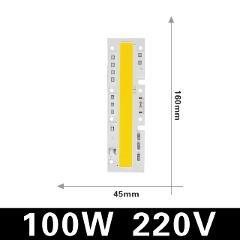 COB LED Lamp Chip 220V Smart IC No Need Driver Ampoule LED Bulb Flood Light Spotlight 10W 20W 30W 50W 70W 100W 120W Diy Lighting