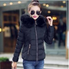 2020New Women's Padded Down Jacket Winter Warm Coat big Fur Hoodie Thin Zipper Short Coat Ladies Elegant Winter Jacket LZ878