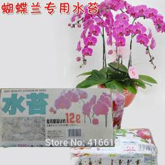 HighQuality Sphagnum Moss Bryophytes Phalaenopsis Butterfly For All Kinds of Orchid Medium Moisturizing Nutrition Soil 150g/Pack