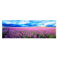 Natural Sunset Could Flower Plant Canvas Painting Landscape Posters and Prints  Scandinavian Wall Art Picture for Living Room